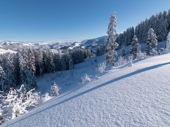 Jaunpass, Gruèyre, Switzerland.