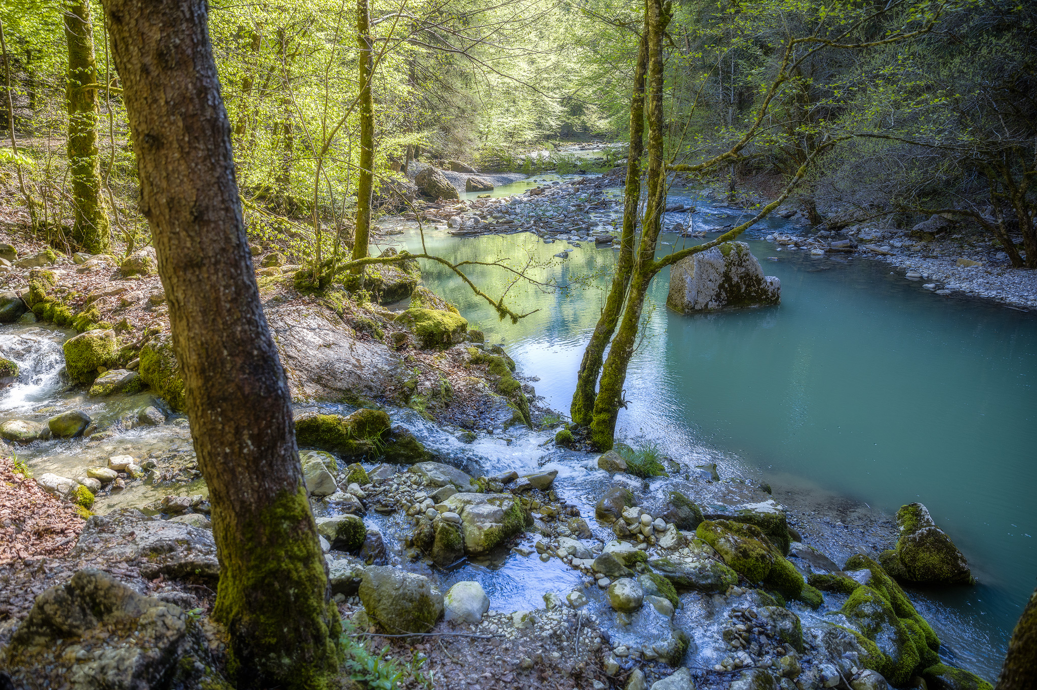 Gorges de Jognes, Switzerland.